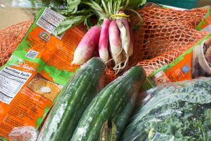 Navigating the World of CSA's